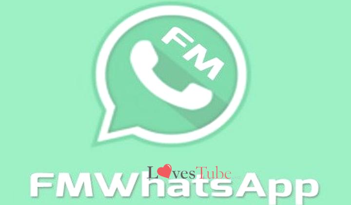 Fitur Menarik dari FMWhatsApp